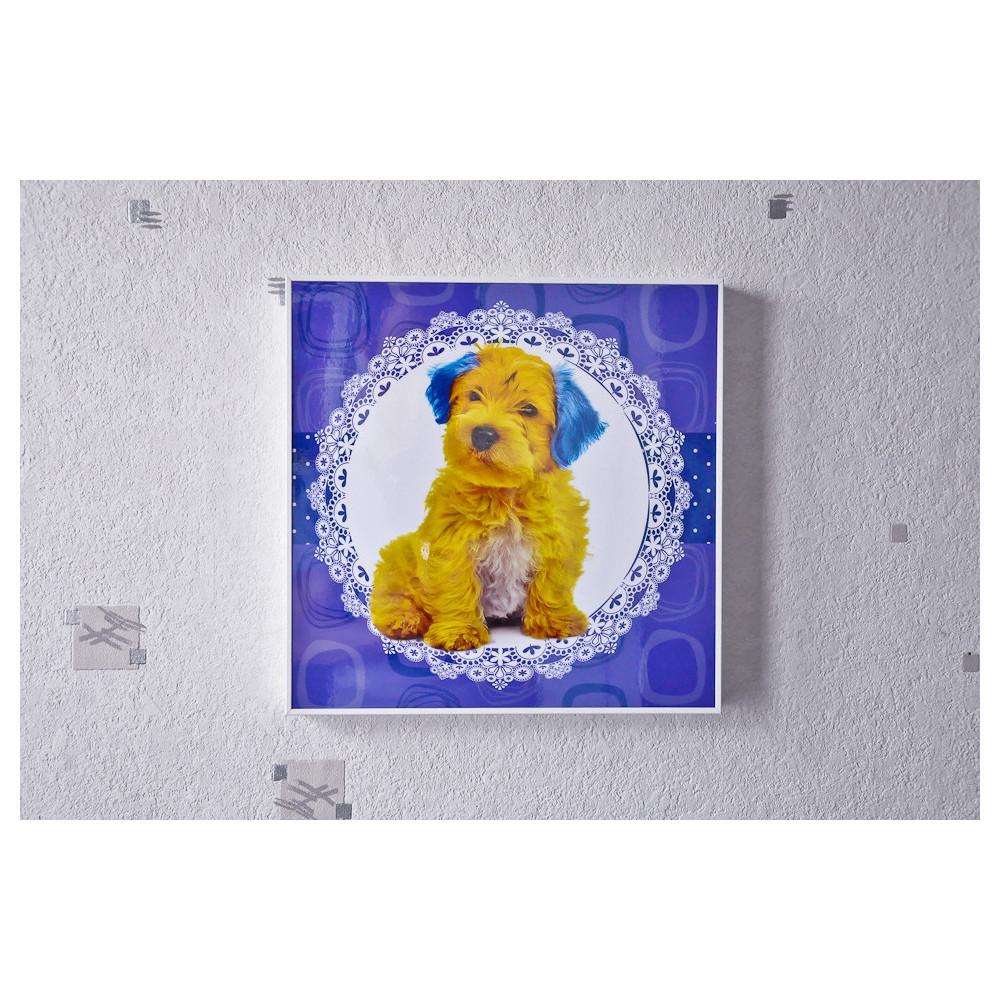 Tableau Chien jaune et bleu 30x30 cm