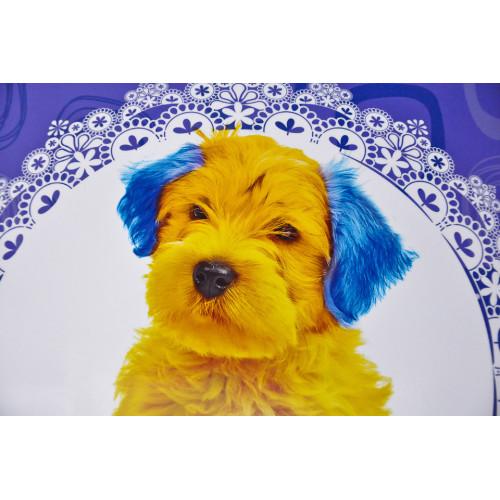 Tableau Chien jaune bleu 30x30
