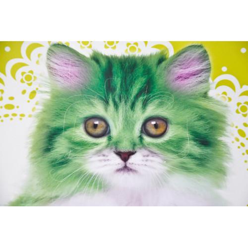 Chat vert