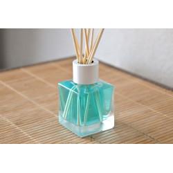 Diffuseur de parfum 60 ml senteur Océan
